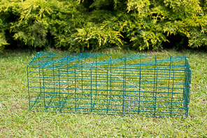 RUSTLER CAGE RABBIT TRAP